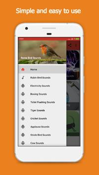 Robin Bird Sounds poster