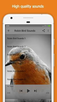 Robin Bird Sounds apk screenshot