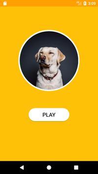 dogQ screenshot 1