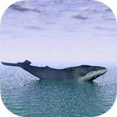 Blue Whale Real Escape Challenge Runner icon