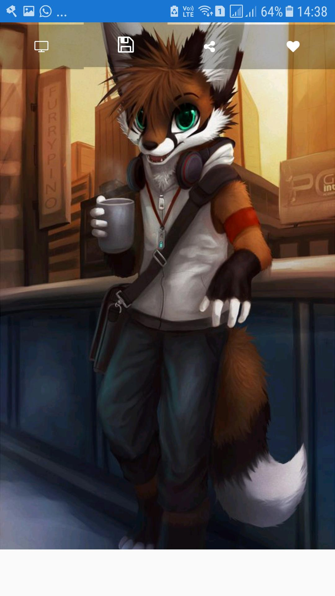 Furry Wallpapers Hd For Android Apk Download