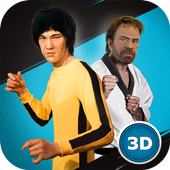 Kung Fu Fighting Stars Cup icon