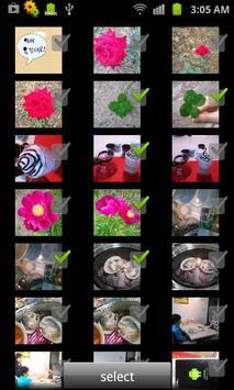 Bamboo Leaf - Wifi Disk screenshot 4