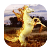 Fiery unicorn live wallpaper icon