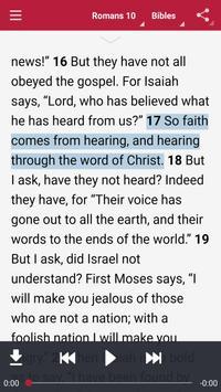 Bible: Dramatized Audio Bibles poster