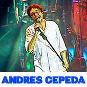 Top Song by Andrés Cepeda - Te Voy a Amar icon