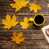 Autumn Leaves Live Wallpapers icon