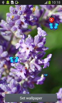 Lavender Live Wallpapers apk screenshot