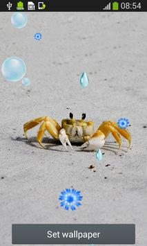 Sea Creatures Live Wallpapers apk screenshot