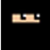 NinjaDodge icon