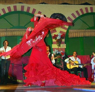Learn Flamenco Dance apk screenshot