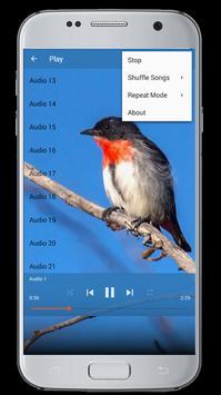 Master Kicau Burung Cabai screenshot 11