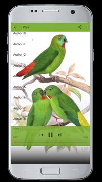 Master Kicau Burung Serindit screenshot 1