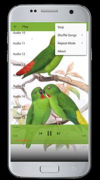 Master Kicau Burung Serindit apk screenshot