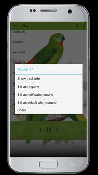 Master Kicau Burung Serindit screenshot 6