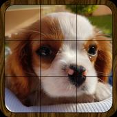Puzzle: Landscapes, Pets & Animals, Flowers & More icon