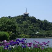 Japan:Sankei Garden :Yokohama icon