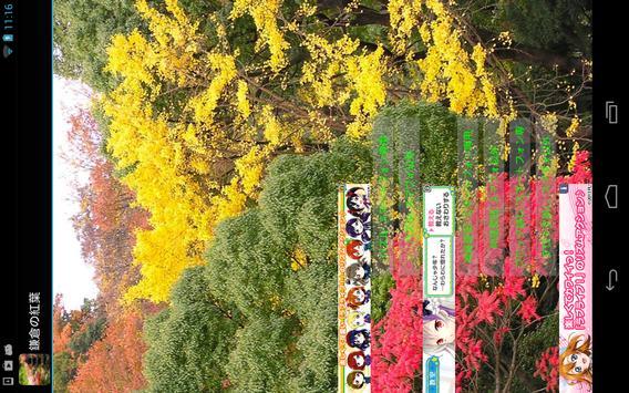 Autumn leaves of Kamakura poster