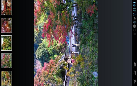 Autumn leaves of Kamakura screenshot 1