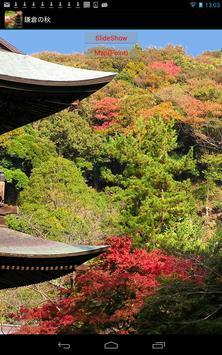Autumn leaves of Kamakura screenshot 4