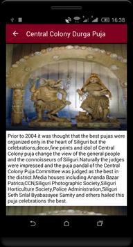 Central Colony Durga Puja screenshot 4