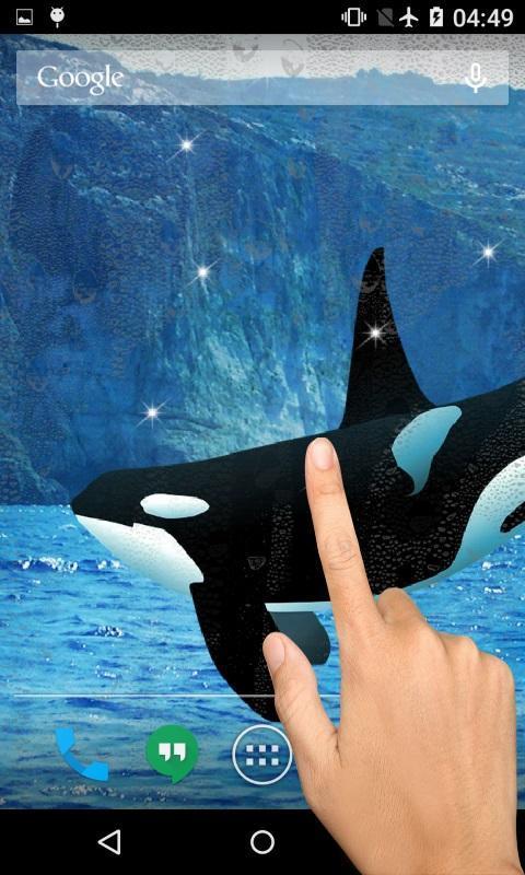 Orca Wallpaper Free Apk Screenshot