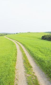 Sky Wind Grasslands Wallpapers apk screenshot