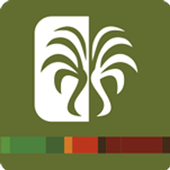 Palma Al Dia icon