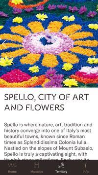 Spello's Villa of Mosaics screenshot 3