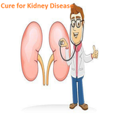 Cure for Kidney Disease icon