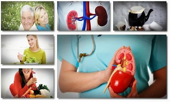 Cure for Kidney Disease screenshot 1