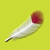 PEAU ETHIQUE L'INSTITUT icon