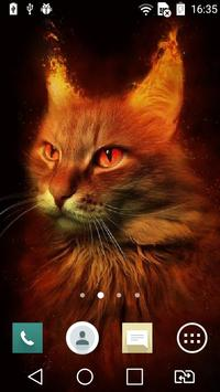 Fiery red cat live wallpaper poster
