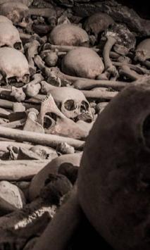 Burial Wallpapers apk screenshot