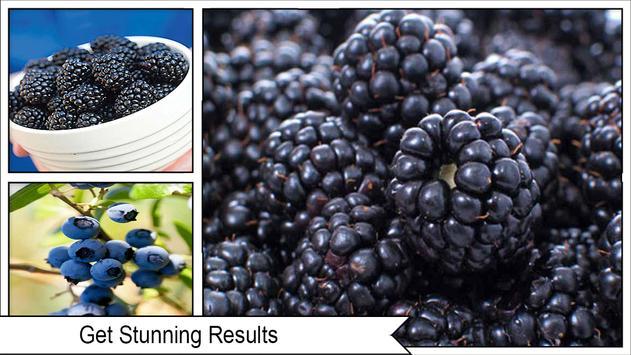 Easy DIY Grow Blackberry Plants in Pots screenshot 3