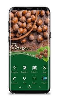 Fındık Diyarı poster
