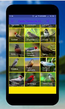 Brazilian Coleiro apk screenshot