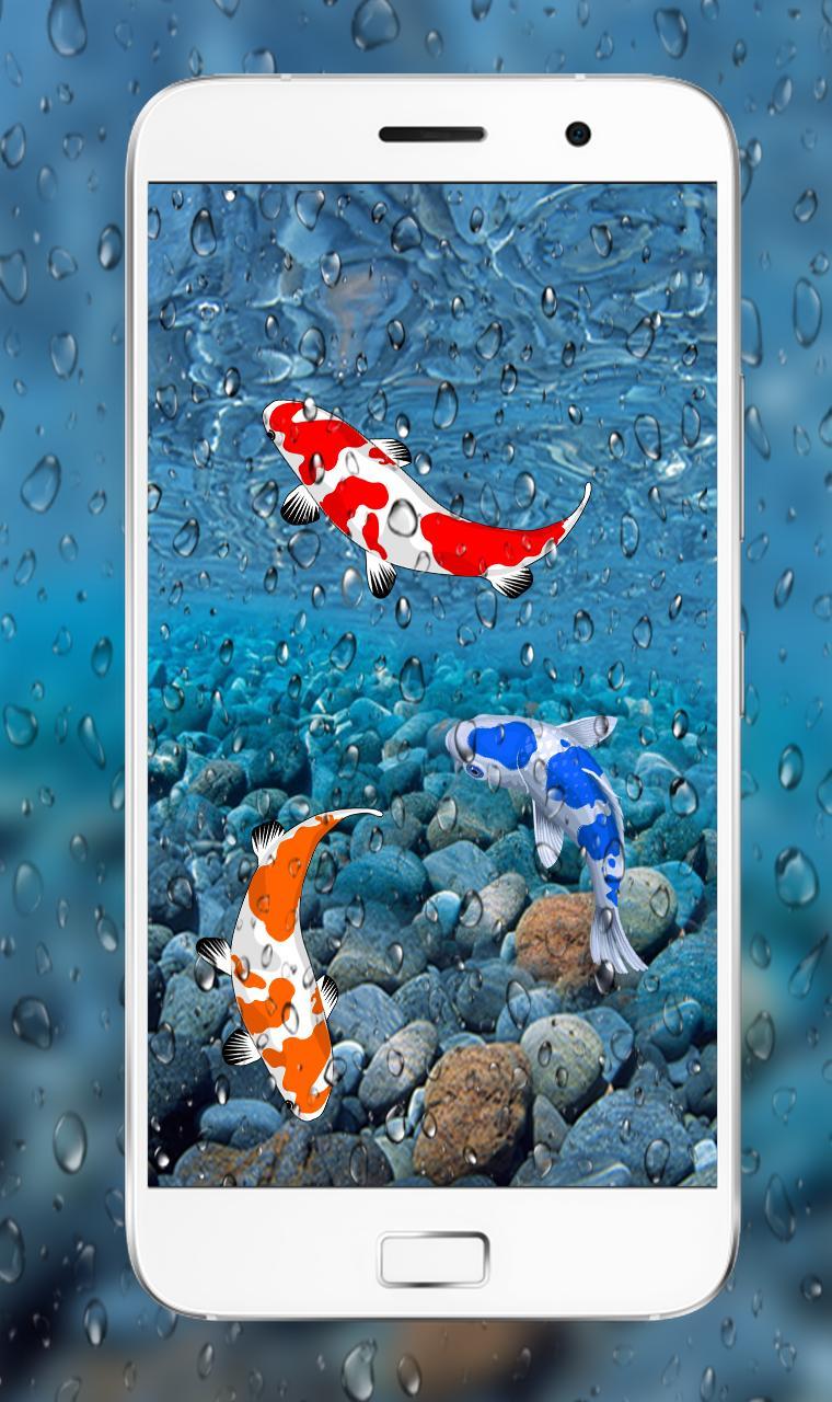 Fish Live 3d Wallpaper 2018 Dynamic Aquarium Koi For