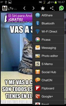 Cuanto Cat apk screenshot
