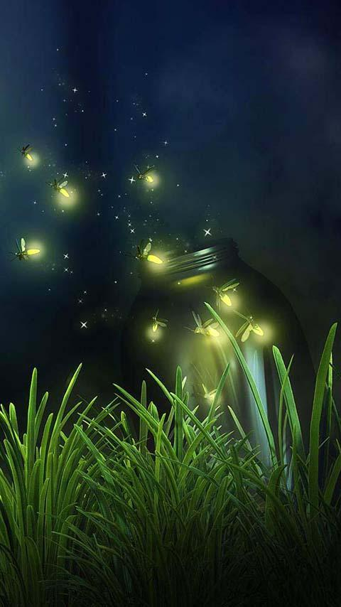 Fireflies Live Wallpaper For Android Apk Download