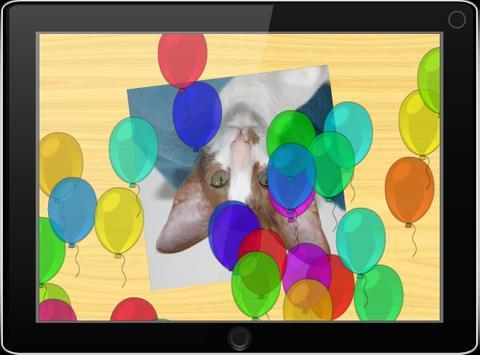 Пазлы для детей: фото котов apk screenshot