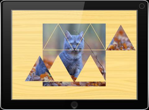 Пазлы для детей: фото котов poster
