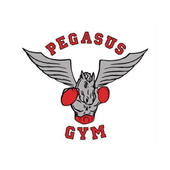 Pegasus Gym icon