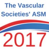 VSASM2017 icon
