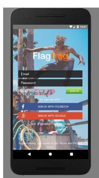 Flagfrog screenshot 1
