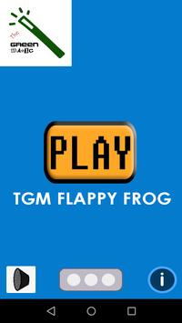 TGM Flappy Frog poster