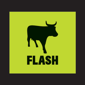 FLASH Trader icon