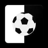 Flash Football icon