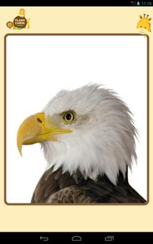 Sound FlashCard (bird) screenshot 8