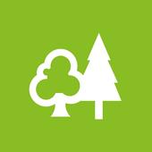Forest Xplorer icon